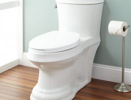Plumbing Repair for Toilets